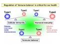 immunesystem2