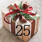 70383-gift-wrap-rosemary-r-x